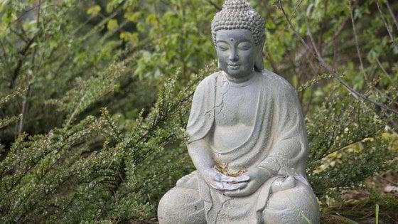"""""""La mia vita con il Dalai Lama alla scoperta della meditazione"""""""