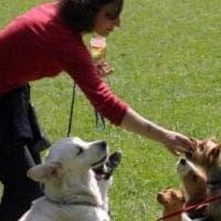 Ore pagate per curare il cane: così cambia il welfare in azienda