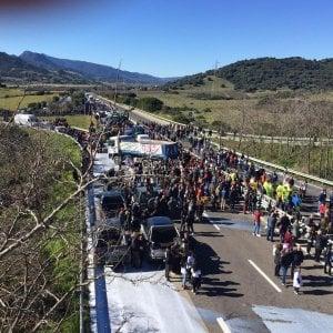 Rivolta del latte, anche gli studenti in piazza. Continuano i blocchi sulle statali, tensione alla Regione