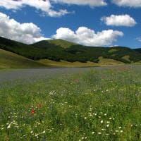 Obiettivo Terra, un concorso fotografico per salvare l'ambiente