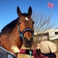 """""""Cavallo rosa"""", il mondo dell'equitazione contro la pedofilia"""