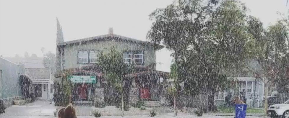Los Angeles, fiocchi di neve sulla città. Ed è subito #snowmaggedon