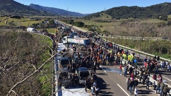 Protesta latte, dieci pastori indagati a Nuoro per blocchi stradali