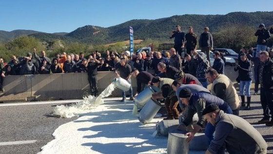 Protesta del latte: assalto a cisterna nel Nuorese e nel giorno delle Regionali molti pastori disertano i seggi