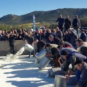 Sardegna, analisi del voto: tra i pastori tanti astenuti e molti voti al centrodestra. E oggi riprende il negoziato sul latte