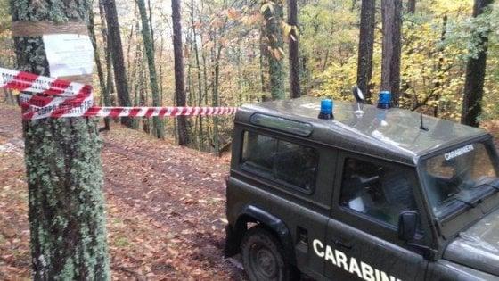 Aggrediscono i cacciatori in Aspromonte per procurarsi armi