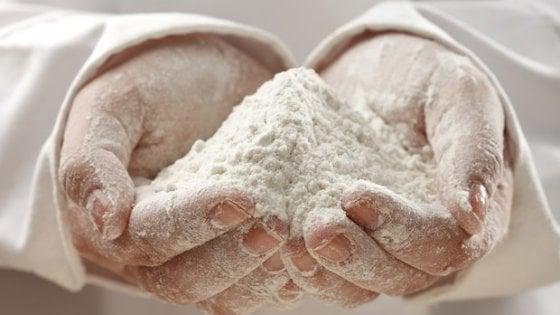 Allerta allergeni per la farina: soia non presente in etichetta