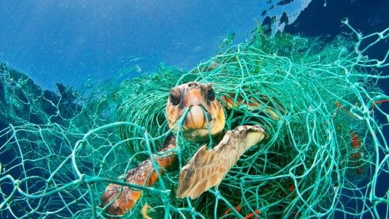 Plastica, 100 milioni di tonnellate all'anno disperse in natura