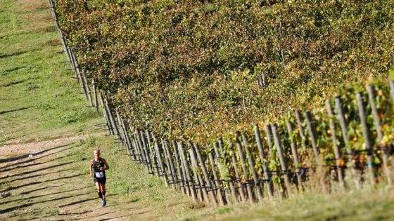 Vino e running: dal Collio al Chianti e al Barbaresco, ecco la stagione delle ecomaratone