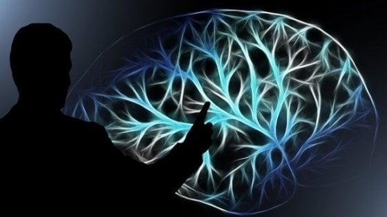 Il cervello delle donne è più giovane di tre anni di quello degli uomini
