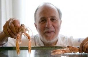 Addio a Luciano Zazzeri  lo chef stellato toscano  con il mare nel cuore