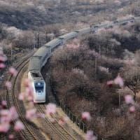 La politica italiana non sa cosa pensare della Cina: il risultato dell'analisi della...