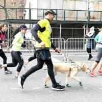 Le immagini di Thomas e dei suoi amici: insieme fino al traguardo della mezza maratona