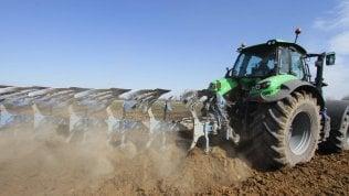 Agroalimentare, sull'export si può fare ancora di più