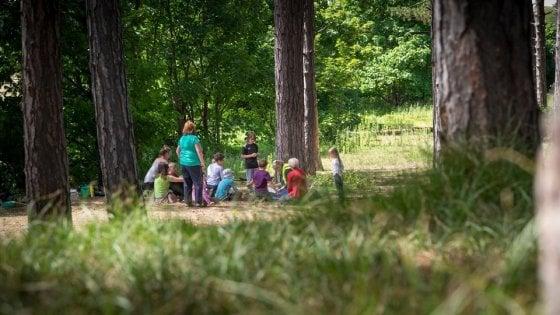 Impariamo ad amare le nostre foreste