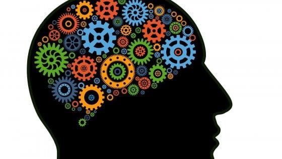 Scoperte le cronomappe del cervello che misurano il tempo