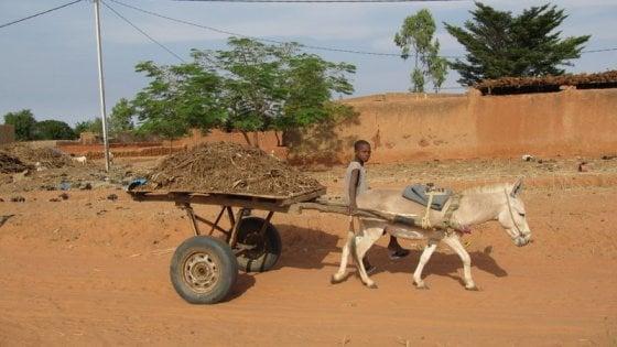 Attacco armato in un villaggio del Mali: