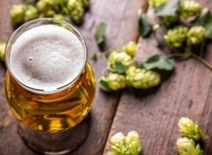 Ecco una buona notizia: sorpresa, la birra non fa ingrassare
