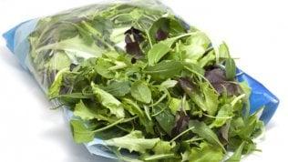 Dai pesticidi al cadmio, cosa si nasconde nelle insalate in busta