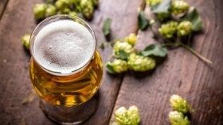 Finalmente una buona notizia: la birra non fa ingrassare