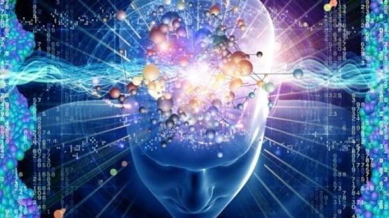 Sorpresa: la nostra memoria ha una riserva di cellule nervose