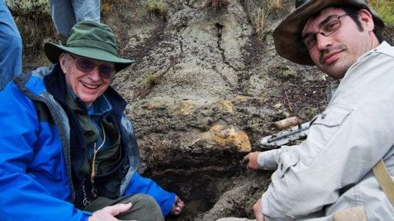 """La """"Pompei"""" dei dinosauri: gli animali estinti per l'impatto con l'asteroide"""