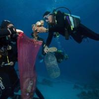 Egitto: vietata la plastica usa e getta nel Mar Rosso