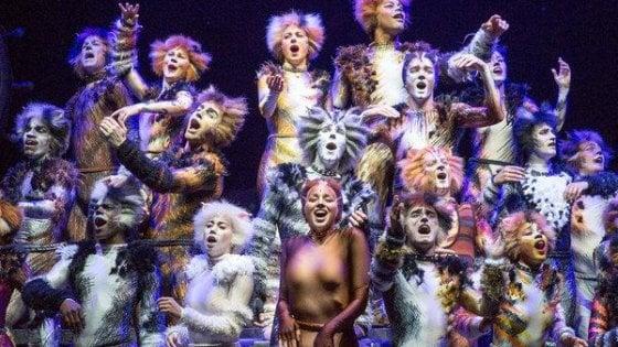 Musical, quel genere immortale: da 'Bulli e pupe' a 'Cats', a Hollywood è tempo di remake