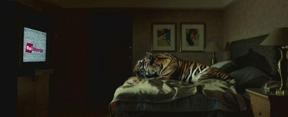 Da Borghi a Francesca Archibugi, il mondo del cinema contro la chiusura di RaiMovie