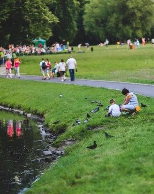 Tempo di picnic: sull'erba c'è più gusto