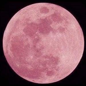 Tutti col naso all'insù per vedere la Luna rosa