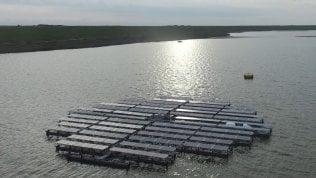 """I pannelli solari invadono il mare: un arcipelago di """"supergirasoli"""" per dare luce all'Olanda"""