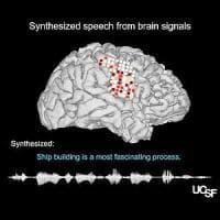 """L'apparecchio che riproduce la """"voce del cervello"""""""