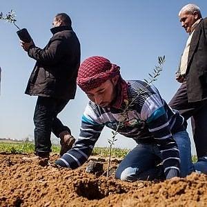 Cinema, storie dal Medio Oriente: per ragionare su diritti umani, la pace, oltre le bombe, i muri e l'odio