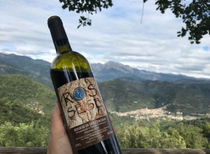 Dolceacqua: quegli artigiani del vino tra passione e flagelli in vigna