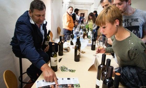 Abruzzo al Naturale: tre giorni di assaggi e incontri con gli artigiani del vino