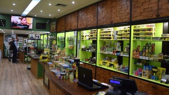 Cannabis light, il consorzio denuncia: Con la chiusura a rischio 10mila addetti