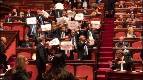 """Radio radicale, governo diviso, Lega: """"Proroga 6 mesi"""". Pd: """"Chiusura è attentato a democrazia"""""""
