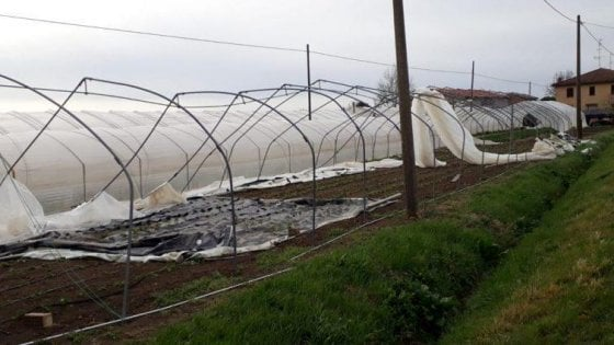 Pazza primavera, il maltempo fa salire del 7 per cento i prezzi delle verdure