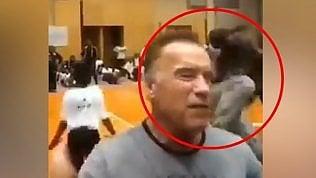 Schwarzenegger aggredito: colpito con un calcio alle spalle