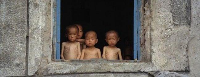 Corea del Nord, la carenza di cibo è allarmante: Seoul in aiuto di Pyongyang