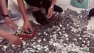 Paga l'auto nuova con 66 bustedi monetine: i commessi disperati
