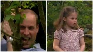 Reali inglesi, il nomignolo di papà William per Charlotte è delizioso
