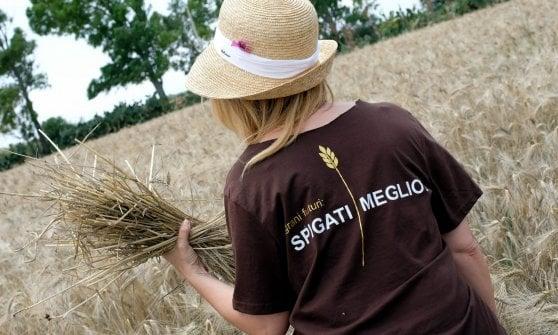 """144205894-88cecbac-7eec-499d-8bcb-c0d53dfa195d """"Non perdiamo la sapienza del pane"""": in Puglia il manifesto del cibo consapevole"""