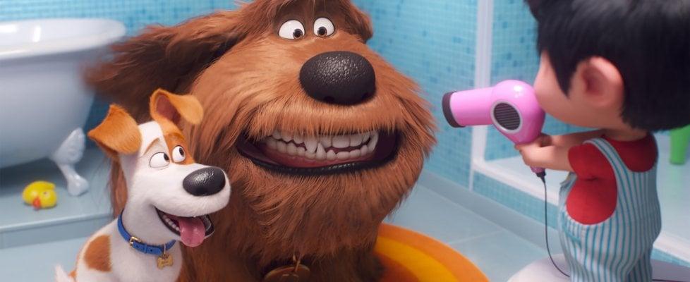 'Pets 2', tornano i cani Max e Duke. Questa volta dovranno vedersela con un cucciolo d'uomo
