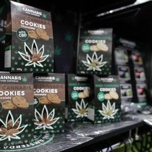 è reato commercializzare i derivati della cannabis light