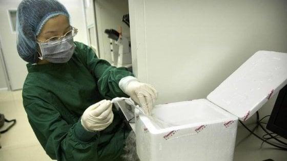 Mortalità più alta per le gemelle cinesi con Dna modificato