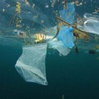 Un mare di plastica. Il Wwf: