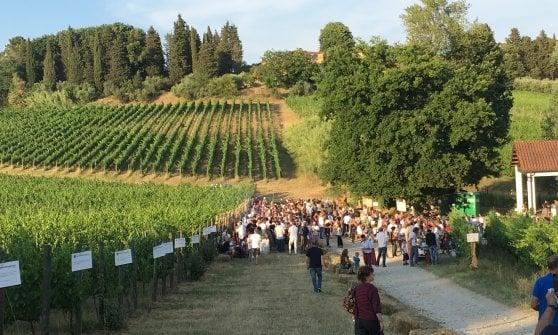Biodinamica in festa sulle colline (e nei ristoranti) di Lucca