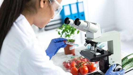 Sicurezza alimentare, la scienza e l'informazione corretta tranquilizzano gli europei